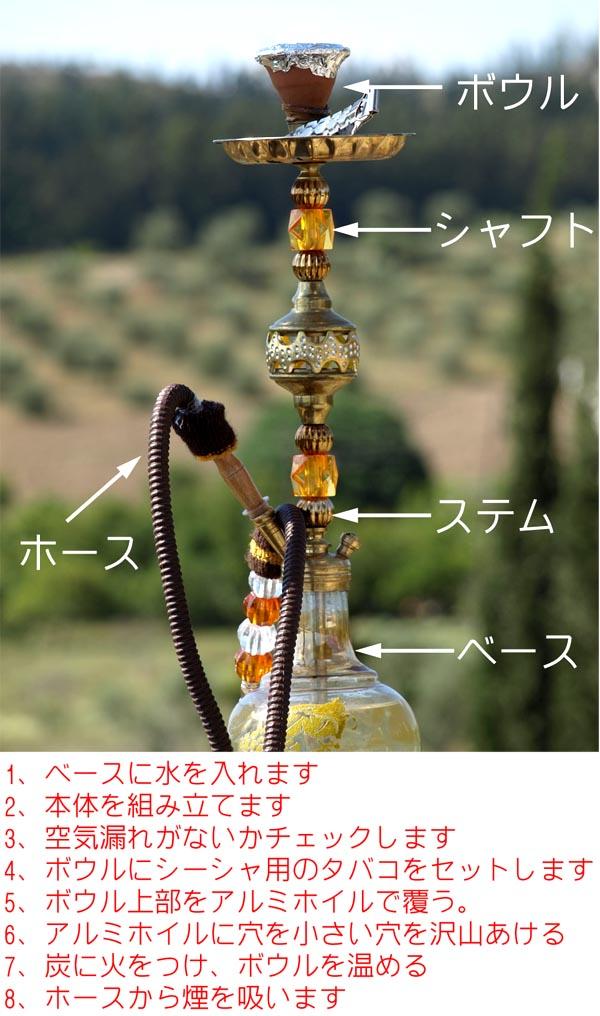 水 タバコ 吸い 方